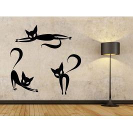 Samolepka na zeď Sada koček 0454