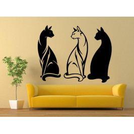 Samolepka na zeď Tři kočky 0458