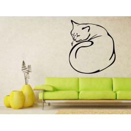 Samolepka na zeď Kočka 0494