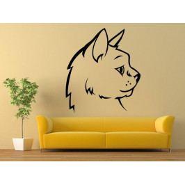 Samolepka na zeď Kočka 0505