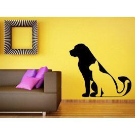 Samolepka na zeď Kočka a pes 0543