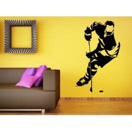 Samolepka na zeď Hokejista 0610