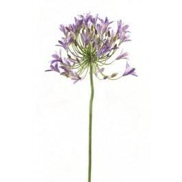 Emerald květiny - Kalokvět modrý, 90cm (71.730)
