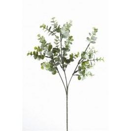 Emerald květiny - Eukalyptus rozvětvený, pudrově šedý, 65cm (50.061)