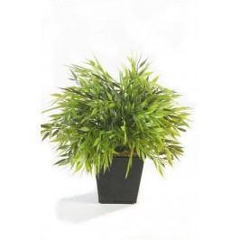 Emerald květiny - Bambus v květináči 25cm, květináč 10cm (11.344C)