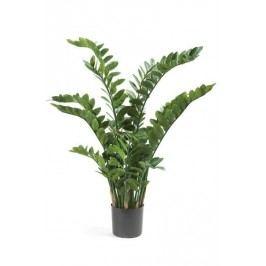 Emerald květiny - Zamioculcas, 15 výhonků, 130cm (11.663C)