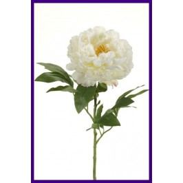 Emerald květiny - Pivoňka krémová, 65cm - Prémiová řada (416100)