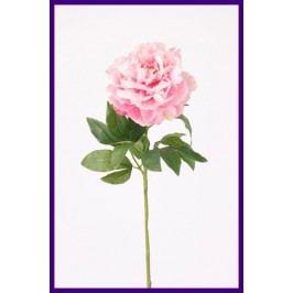 Emerald květiny - Pivoňka růžová, 65cm - Prémiová řada (416102)