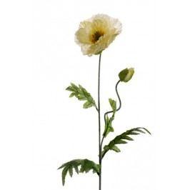 Emerald květiny - Mák krémový, 70cm (417025)