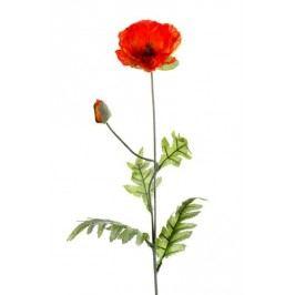 Emerald květiny - Mák oranžový, 70cm (417026)