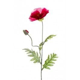 Emerald květiny - Mák beauty, 70cm (417027)