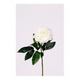 Emerald květiny - Mini povoňka krémová, 42cm (416104)