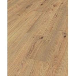 Laminátová plovoucí podlaha Standard DUB Millenium