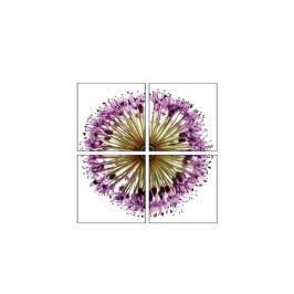 Obraz bodlák - sada 4KS OBK018-B