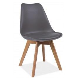 Jídelní židle v moderním retro stylu šedá KN666