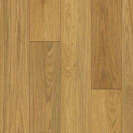 Solid 270 - Classic Woods - Bretagne 744