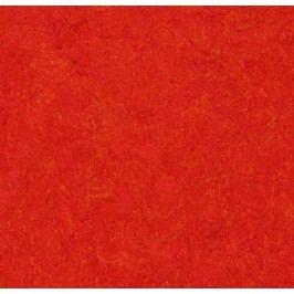 Scarlet 333131