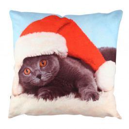 Polštář Christmas Cat, 43x43cm