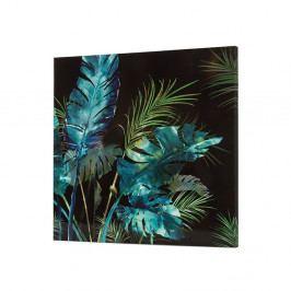 Nástěnný obraz SantiagoPons Plants Ally, 80x80cm
