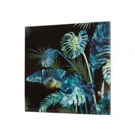 Nástěnný obraz SantiagoPons Plants Bobby, 80x80cm
