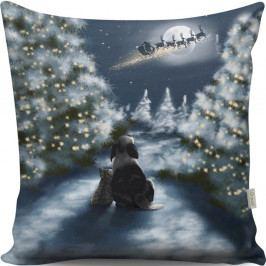 Polštář Christmas View At Night, 43x43 cm