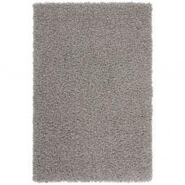 Šedý koberec Obsession My Funky Silv, 40 x60 cm