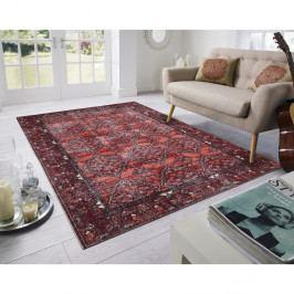 Červený koberec Floorita Bosforo, 200 x 290 cm
