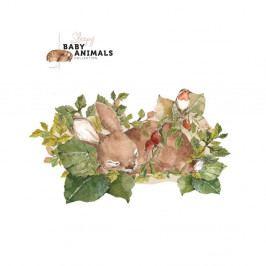 Nástěnná samolepka Dekornik My Little Wild Rabbit, 100x57cm