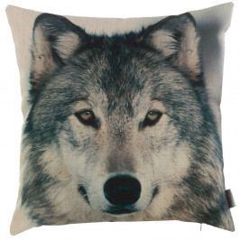 Povlak na polštář Apolena Wolf, 43 x 43 cm
