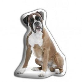 Polštářek Adorable Cushions Boxer
