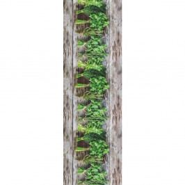 Vysoce odolný běhoun Webtappeti Aromatica, 58x140cm