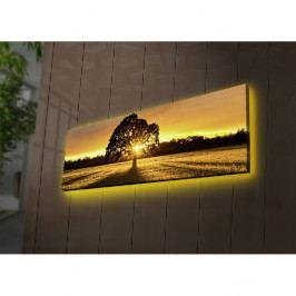 Podsvícený obraz Ledda Tree, 90x30cm