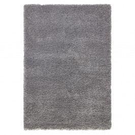 Šedý koberec Mint Rugs Venice, 120x170cm