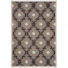 Hnědý koberec vhodný do exteriéru Safavieh Newburry, 160x 99 cm