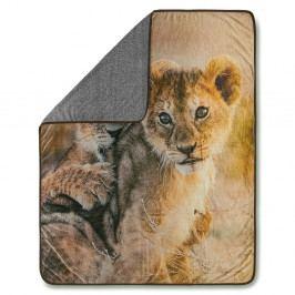Pléd Muller Textiels Baby Lion Sand, 130 x 160 cm