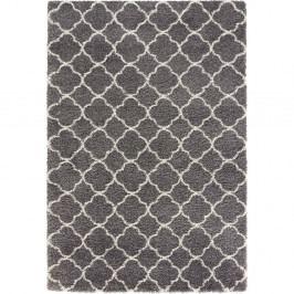 Šedo-bílý koberec Mint Rugs Grace, 200x290cm