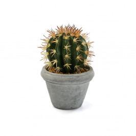 Umělý kaktus v betonovém květináči Versa Pot Home
