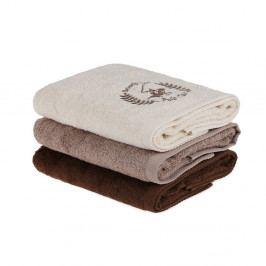 Sada 3 hnědých ručníků na ruce, 90 x 50 cm