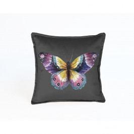 Oboustranný sametový povlak na polštář Surdic Butterfly Puro, 45 x 45 cm