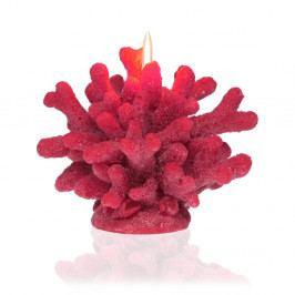 Dekorativní svíčka ve tvaru korálu Versa Coral