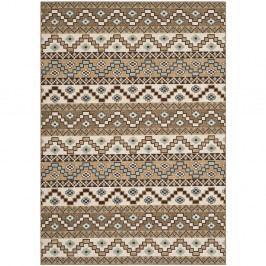 Hnědý koberec vhodný do exteriéru Safavieh Una, 90x150cm