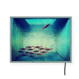 Světelná nástěnná dekorace Surdic Free Fish, 40 x 30 cm