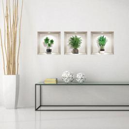Sada 3 3D samolepek na zeď Ambiance Indoor Plants