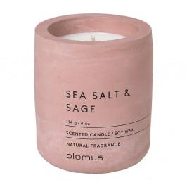 Svíčka ze sojového vosku s vůní šalvěje Blomus Fraga