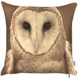 Povlak na polštář Apolena Owl, 43 x 43 cm