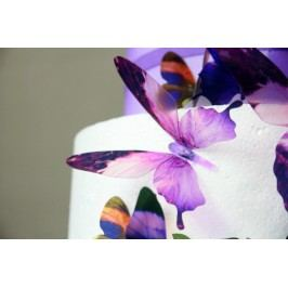 Sada 18 adhezivních 3D samolepek Fanastick Butterflies Purple