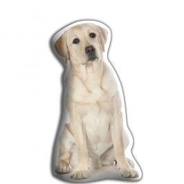 Polštářek s potiskem Zlatého labradora AdorableCushions