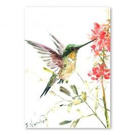 Autorský plakát Hummingbird od Surena Nersisyana, 30x21cm