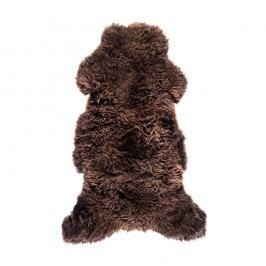 Tmavě hnědá ovčí kožešina Royal Dream Sheep Brown,120x60cm