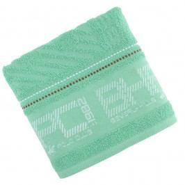 Zelený ručník Beverly Hills Polo Club Logan, 50x100cm